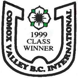 1999 bc int logo